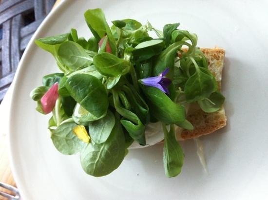 Osteria Volpaia: een heerlijk warm geitenkaasje met een salade