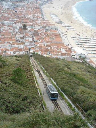 Adega Oceano : View from above Navare