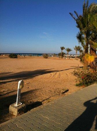 Coral Beach Resort: пляж