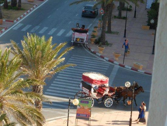 Yasmin Hammamet: Horse and carriage