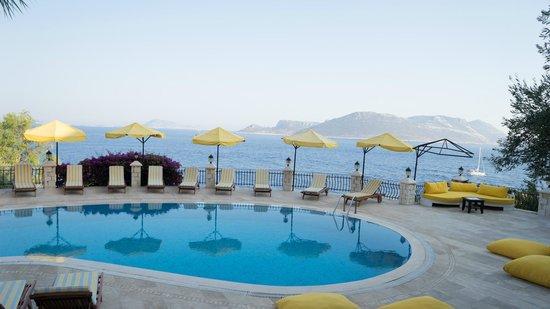 Villa Hotel Tamara : Leerer Poolbereich