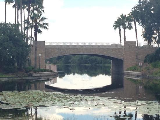 Disney's Caribbean Beach Resort : bridge at the caribbean beach resort