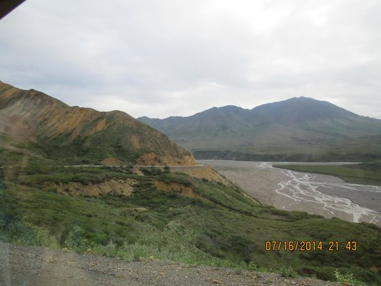 Denali Cabins: breathtaking scenery on our bus trip!!!