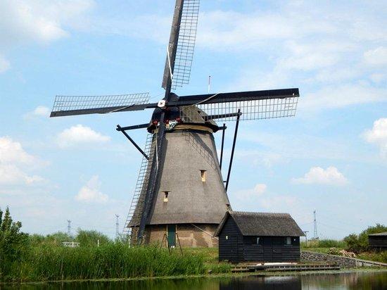 Mühlenanlagen in Kinderdijk-Elshout: One of 19 in this area