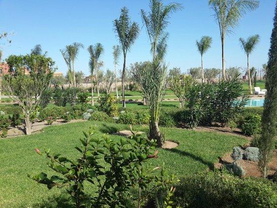 Le Vizir Center: Jardin
