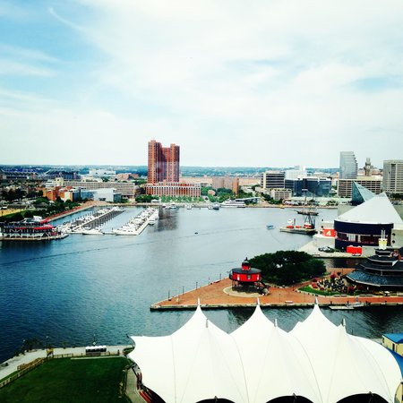 Baltimore Marriott Waterfront: View from room
