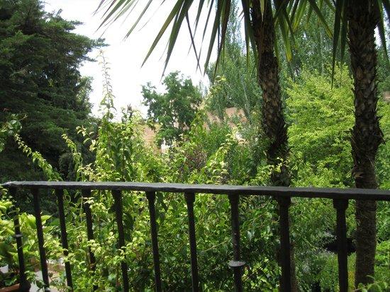 Restaurante Jardines Alberto: Vistas