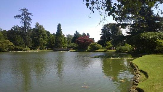 Sheffield Park and Garden: Scene 1