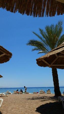 Herods Vitalis Spa Hotel Eilat: ....