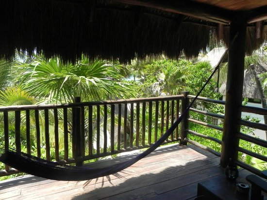 Playa Selva: Vista desde terraza