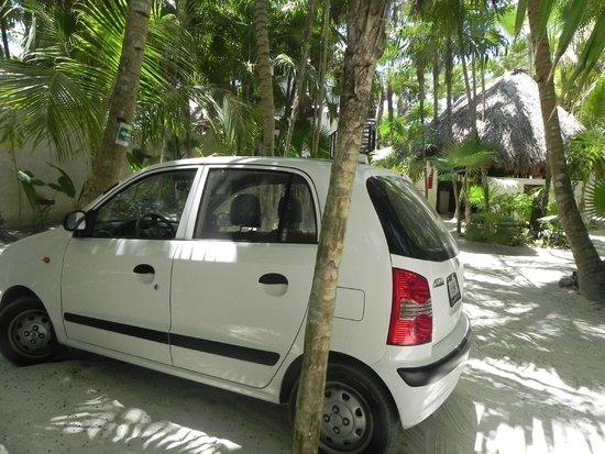 Playa Selva: Estacionamiento