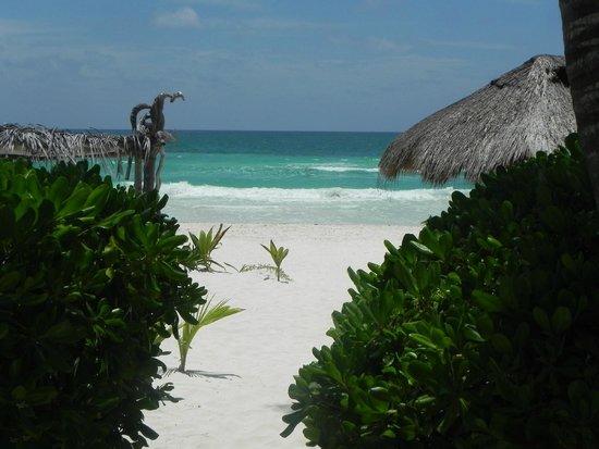 Playa Selva: Acceso a la playa