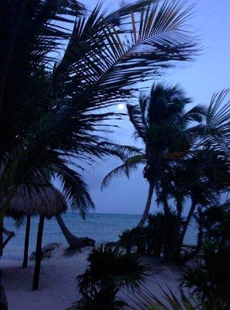Balamku Inn on the Beach: Balamku 7