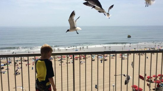 Grand Hotel & Spa: Feeding the seagulls, which came to eat when we tossed bread, then left (they didn't hang around