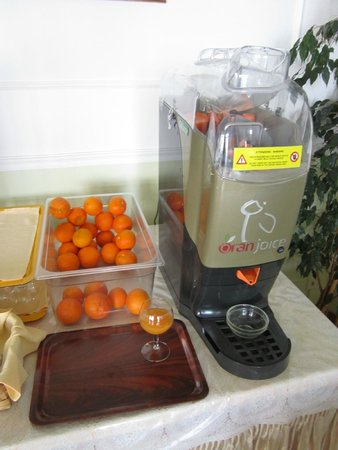 Il Nido Hotel Sorrento: Breakfast orange juicer