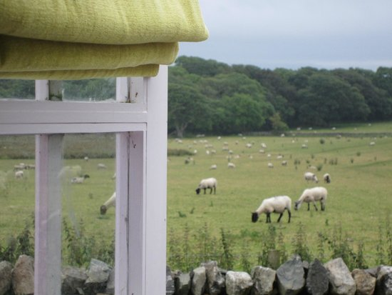 The Outbuildings : View from Little Pink Hut