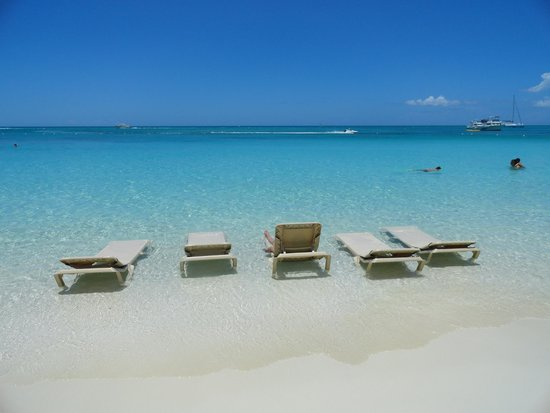 Beaches Turks & Caicos Resort Villages & Spa: Our 5 seats all week! Amazing
