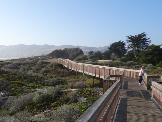 Pismo State Beach North Campground Walkway Close To The At