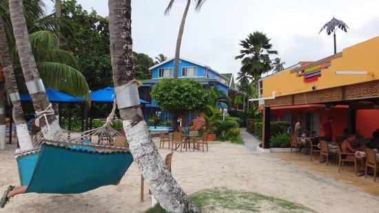 The Grog Rocky Cay San Andres: visual do restaurante