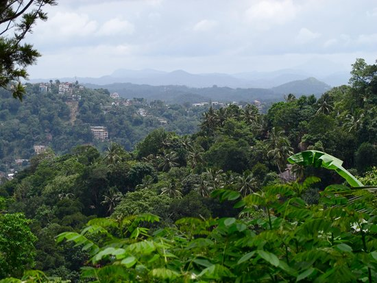 Villa Shenandoah: The view over Kandy