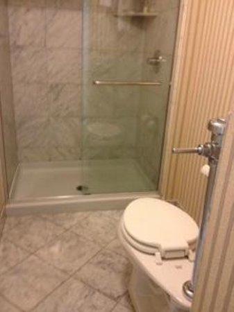Warwick Allerton-Chicago : industrial looking toilet