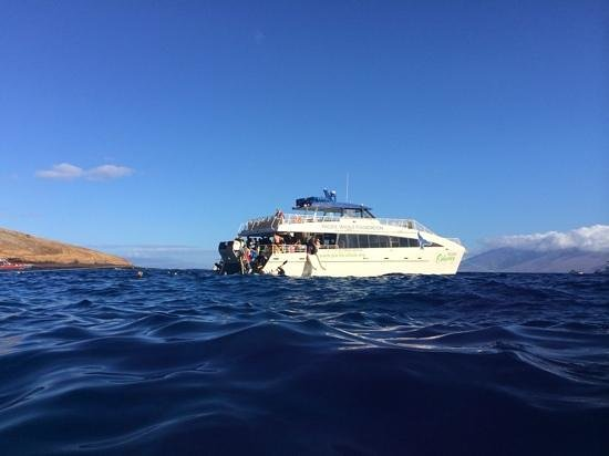 Pacific Whale Foundation: boat