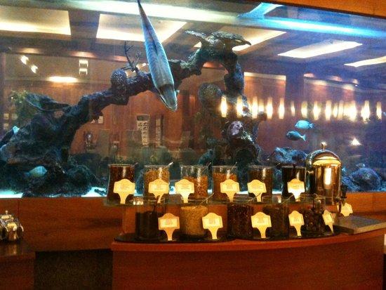 Gloria Serenity Resort: L'assortiment des thés, au fond l'aquarium