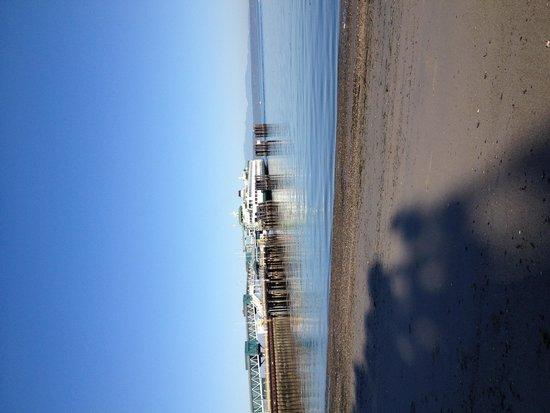 Best Western Plus Edmonds Harbor Inn : Few blocks from the beach and ferry!