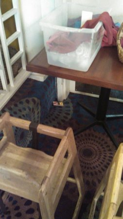 Clarion Hotel: Mouse trap in dining room