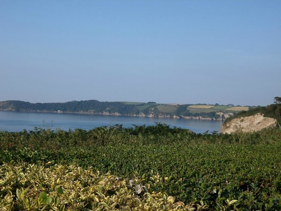 The Carlyon Bay: Hotel grounds