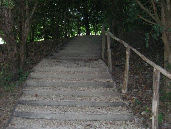 Prior Park Landscape Gardens (NT): No te desanimes
