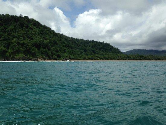 Drake Bay, Costa Rica: Cano Island on Snorkeling Trip