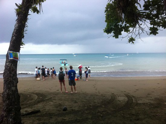 Drake Bay, Costa Rica: Lunch at beach after Snorkeling at Cano Island