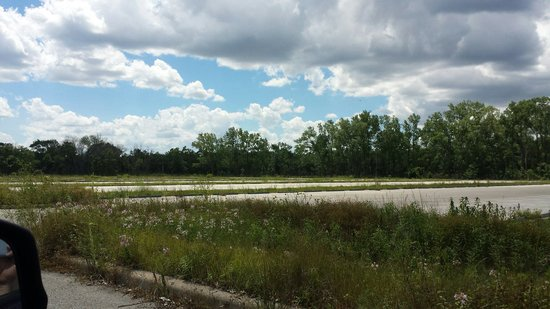 Illinois Beach State Park: Weeds overgrowing the parking lot