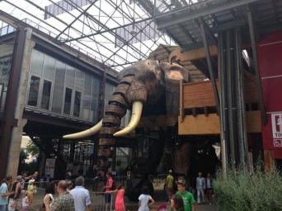 Les Machines de L'ile : l'éléphant de l'île
