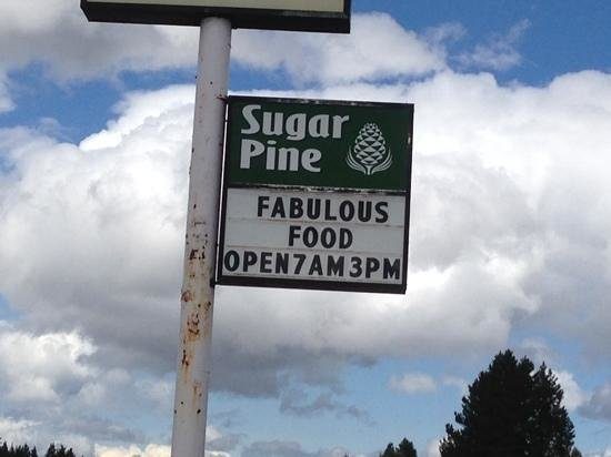 Sugar Pine: This sign is accurate!