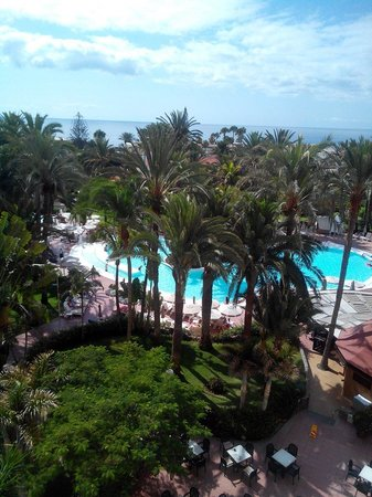 Hotel Riu Palmeras / Bung Riu Palmitos: Piscina