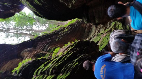 Lost Canyon Tours : touring the dells, lost canyon
