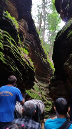 Lost Canyon Tours: touring the dells, lost canyon