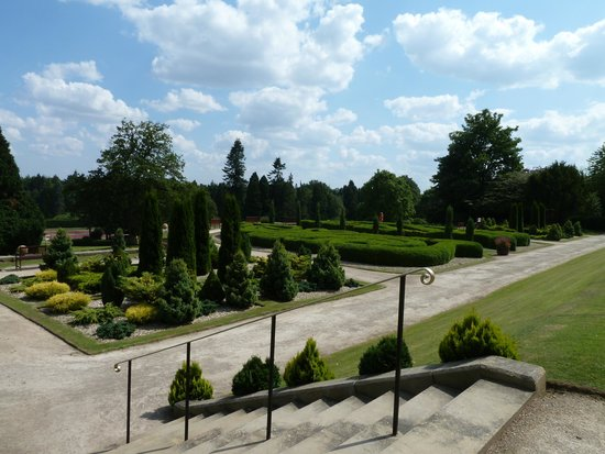Warner Leisure Hotels Nidd Hall Hotel: The maze opposite the Terrace