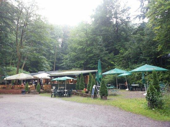 Waldgaststatte Waldapotheke: La clairière
