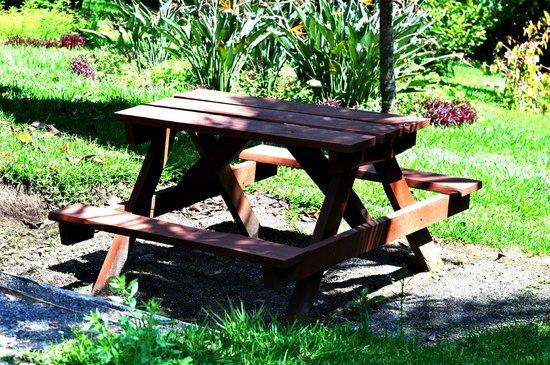 Los Pinos - Cabanas y Jardines: Cabin #3 - Picnic Area