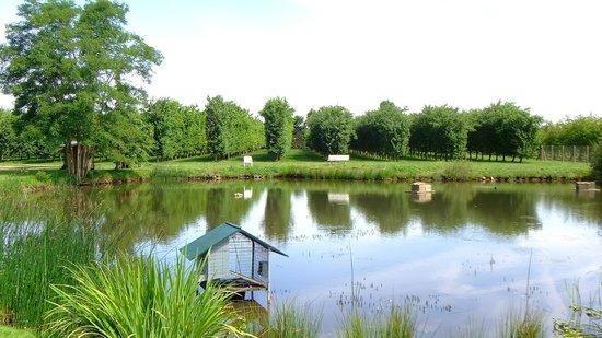 Domaine du Tronchay : Ein großzügiger Teich, nicht nur zum Angeln
