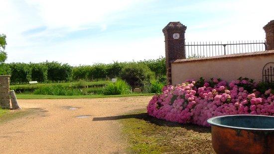 Domaine du Tronchay : Ausblick vom blühenden Hof auf die Obstbäume