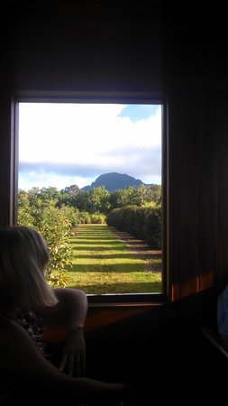 Gaylord's at Kilohana: on train ride around plantation