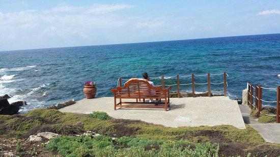 Villa Las Tronas Hotel  & Spa: Aria salmastra Lorenzo