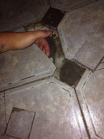 Northlands Hotel: Health hazard! Bathroom floor