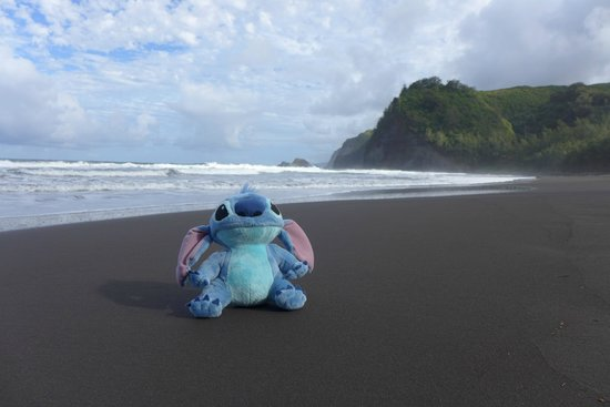Pololu Valley Lookout: Stitch enjoying the cool breeze and relaxing beach