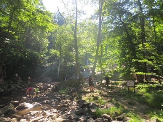 Catoctin Mountain Park: park