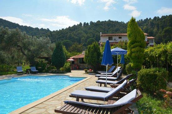 Villa Angela : Pool